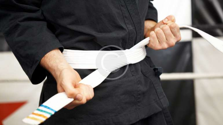 Karate belt system and acknowledgements